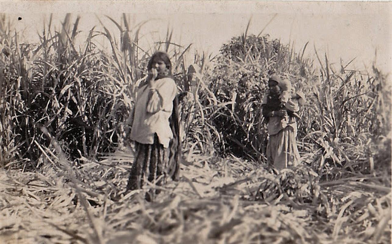 An tuong cuoc song thuong nhat o An Do dau thap nien 1930-Hinh-12