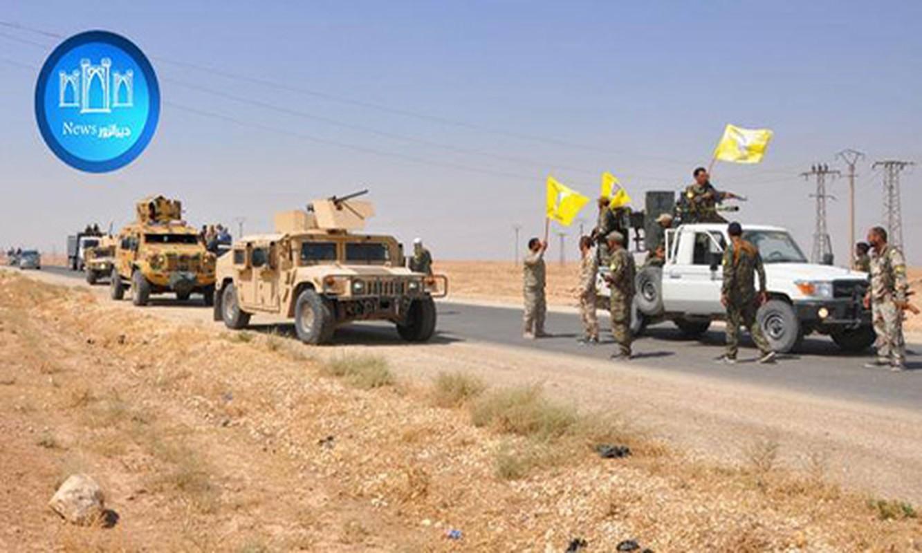 "SDF thang lon, IS ""chet nhu nga ra"" tren chien truong Deir Ezzor"