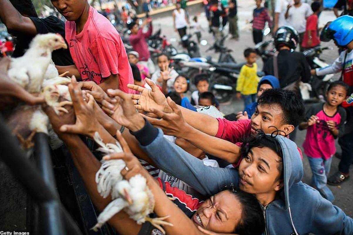 """Kinh hoang ngoi lang Indonesia bi """"xoa so"""" sau tham hoa kep-Hinh-7"""
