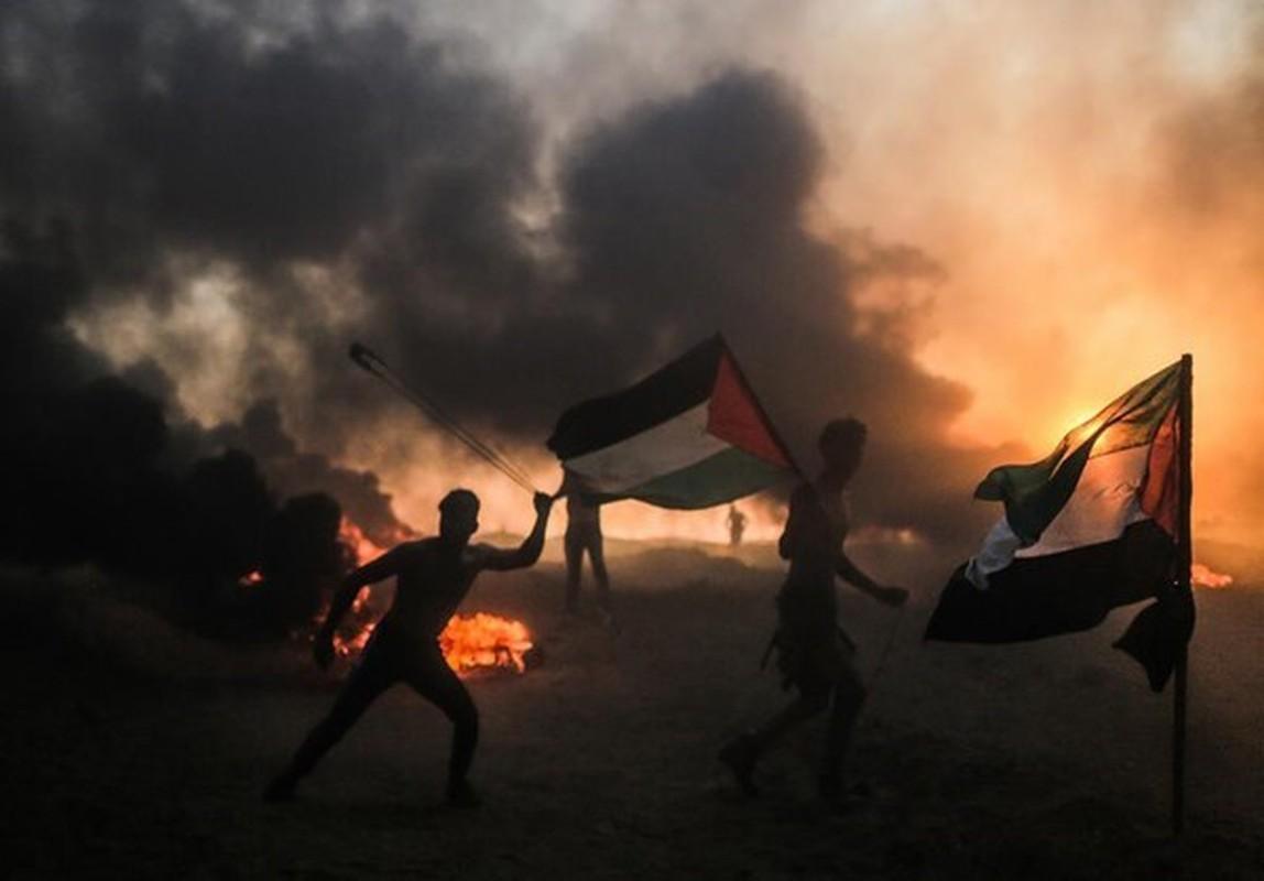 Dai Gaza lai chim trong bien lua, hang tram nguoi thuong vong-Hinh-13