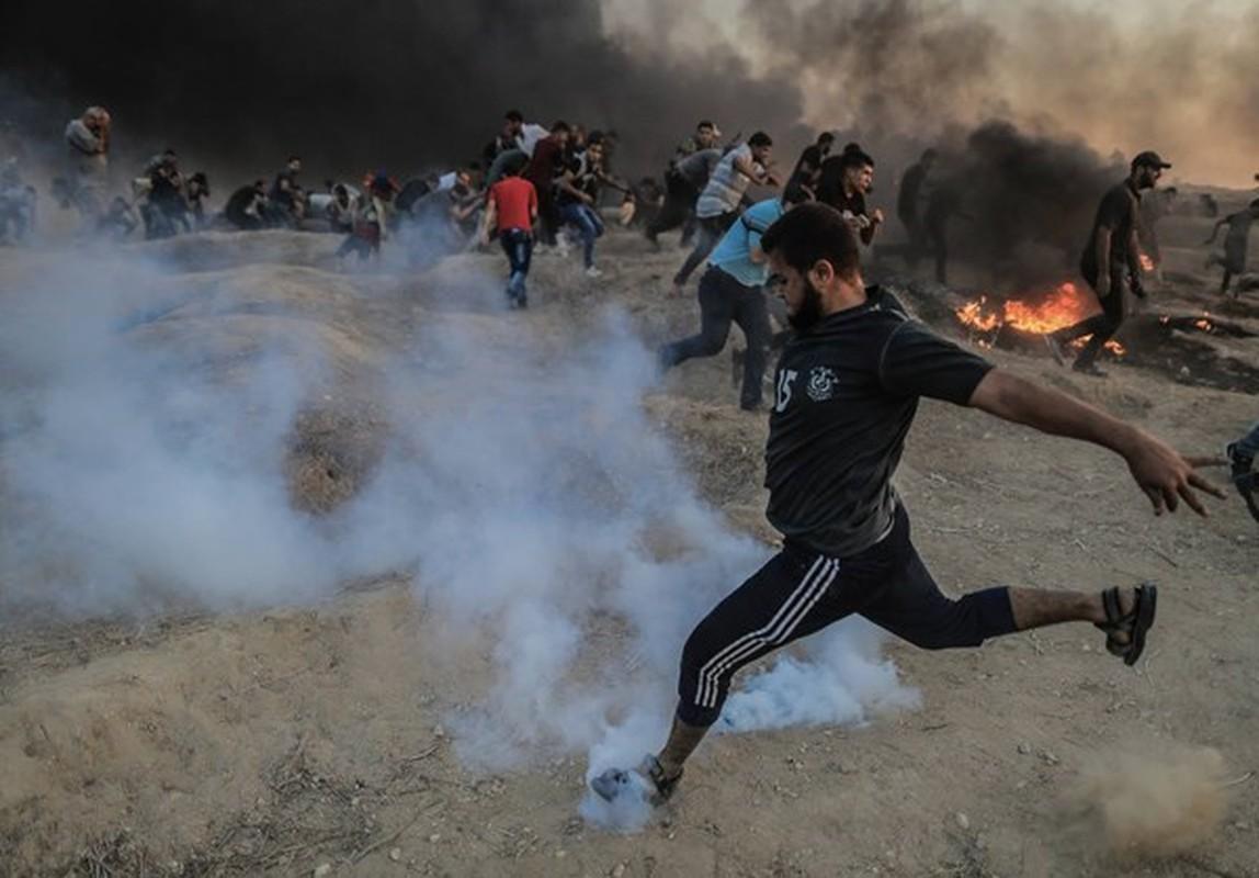 Dai Gaza lai chim trong bien lua, hang tram nguoi thuong vong-Hinh-3