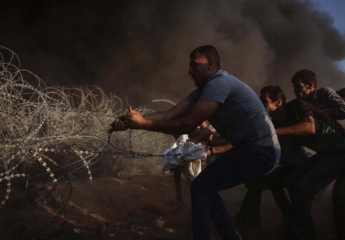 Dai Gaza lai chim trong bien lua, hang tram nguoi thuong vong-Hinh-6