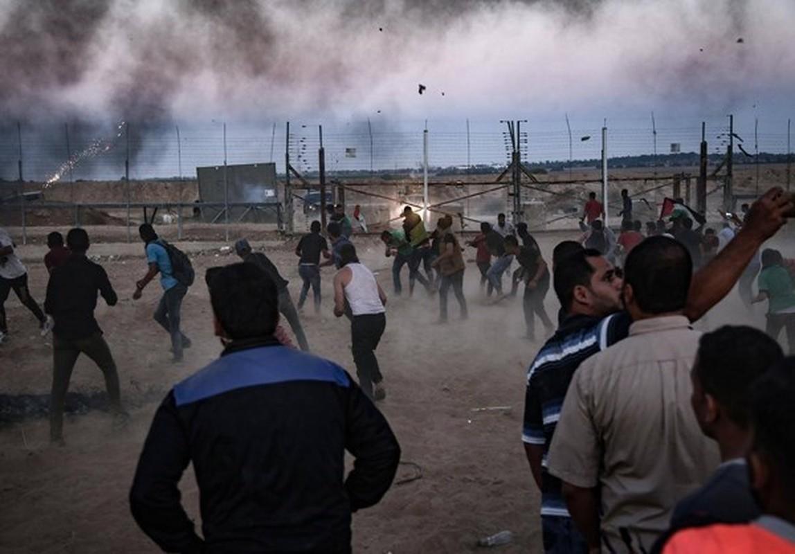 Dai Gaza lai chim trong bien lua, hang tram nguoi thuong vong-Hinh-8