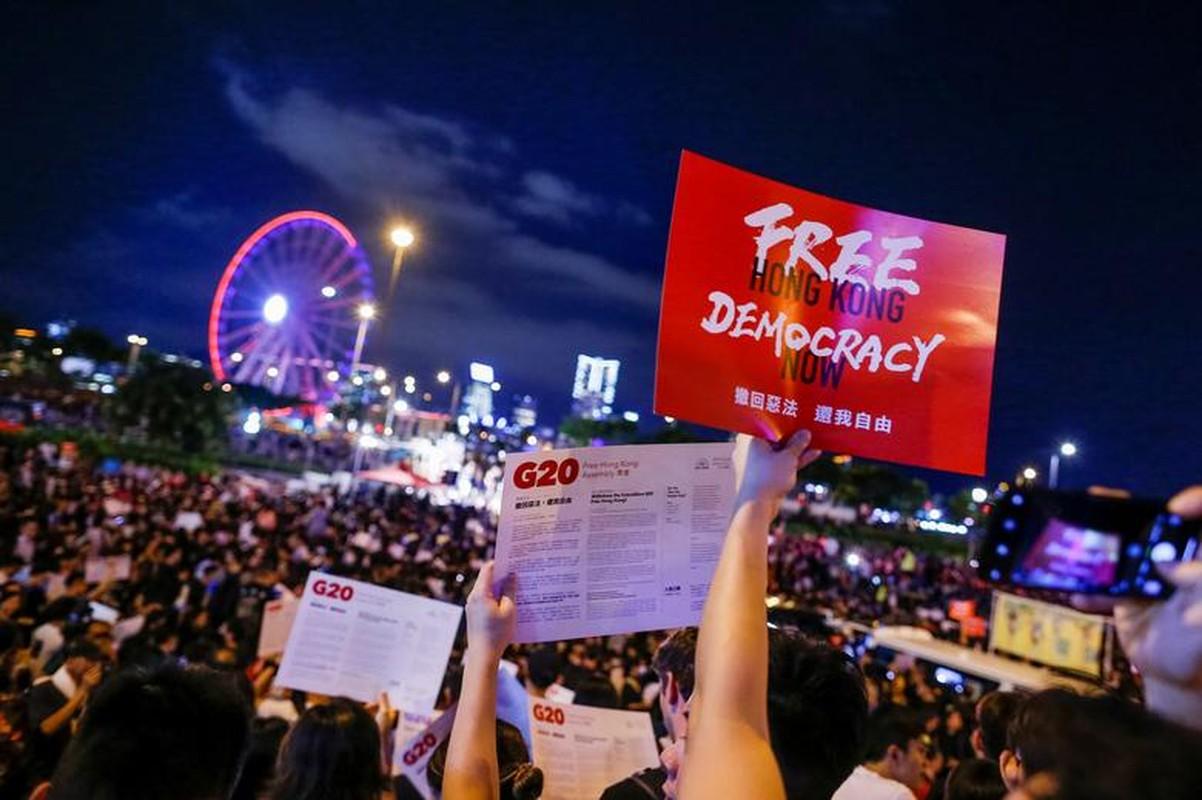 Bien nguoi bieu tinh o Hong Kong truoc G20-Hinh-10