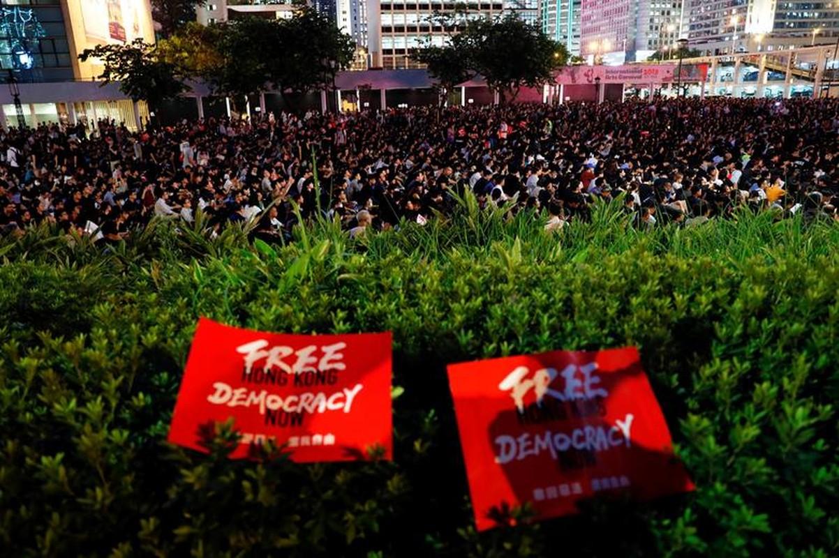Bien nguoi bieu tinh o Hong Kong truoc G20-Hinh-7