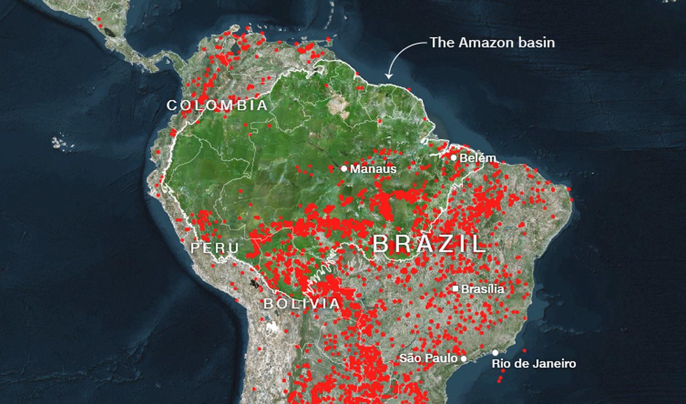 Chay rung Amazon du doi, Brazil tuc toc dieu chien dau co dap lua-Hinh-4