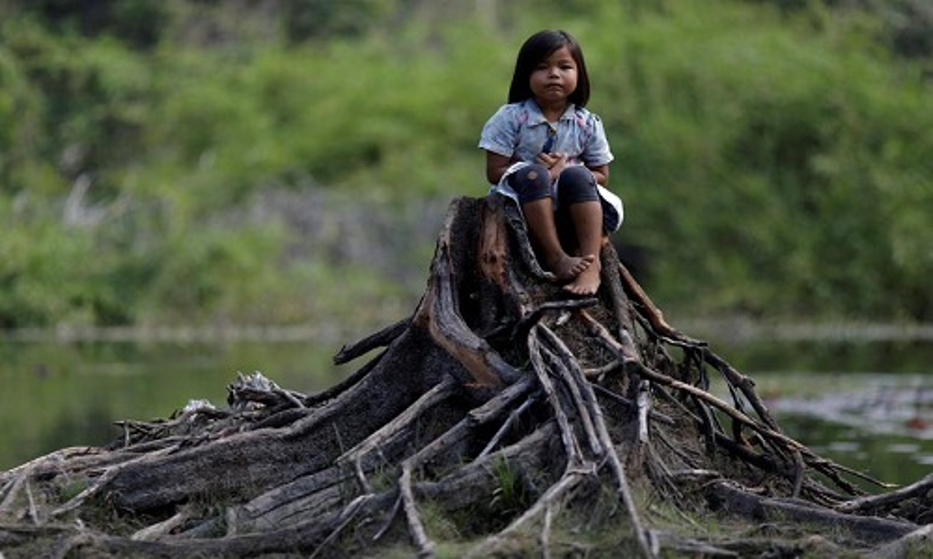 Khon kho cuoc song bo lac Amazon vi chay rung du doi-Hinh-11