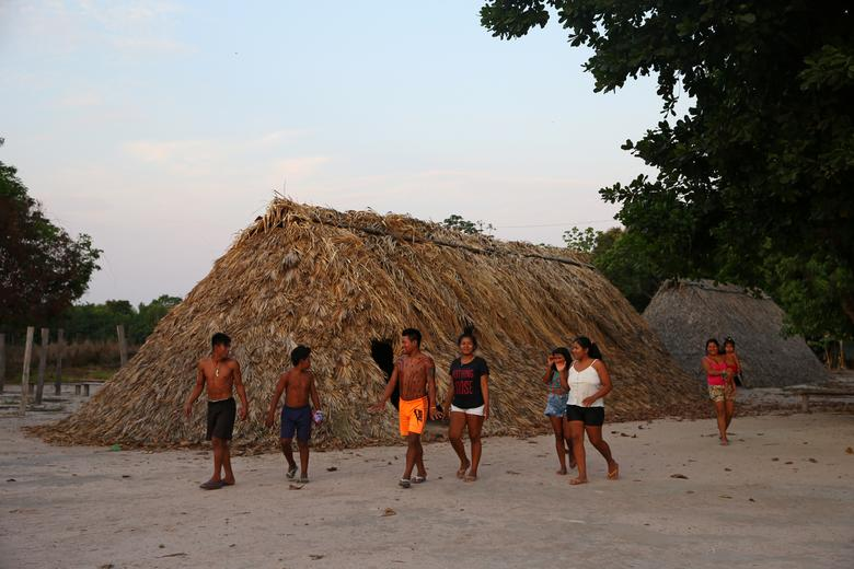 Khon kho cuoc song bo lac Amazon vi chay rung du doi-Hinh-12