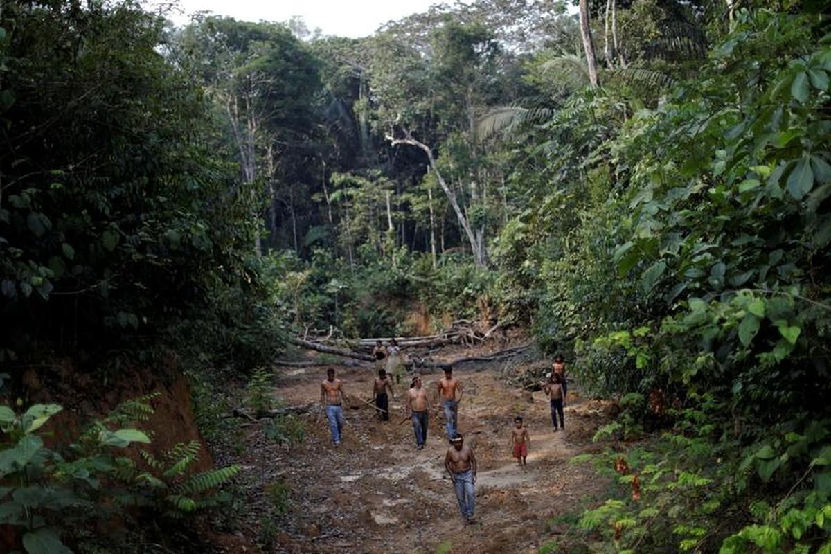 Khon kho cuoc song bo lac Amazon vi chay rung du doi-Hinh-2