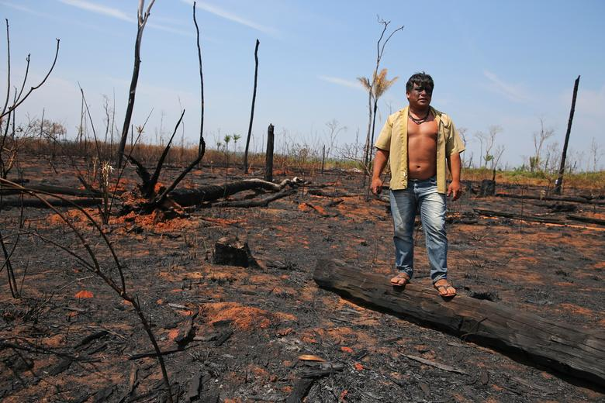 Khon kho cuoc song bo lac Amazon vi chay rung du doi-Hinh-5