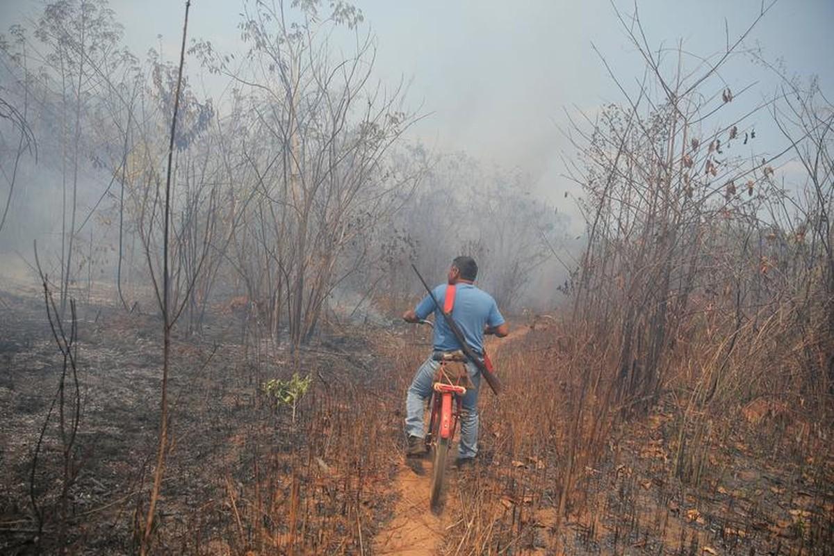 Khon kho cuoc song bo lac Amazon vi chay rung du doi-Hinh-9
