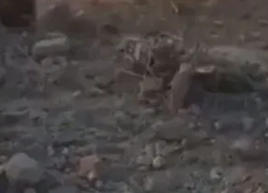 "Tan hoang hien truong My ""huy diet"" trum khung bo IS al-Baghdadi-Hinh-6"
