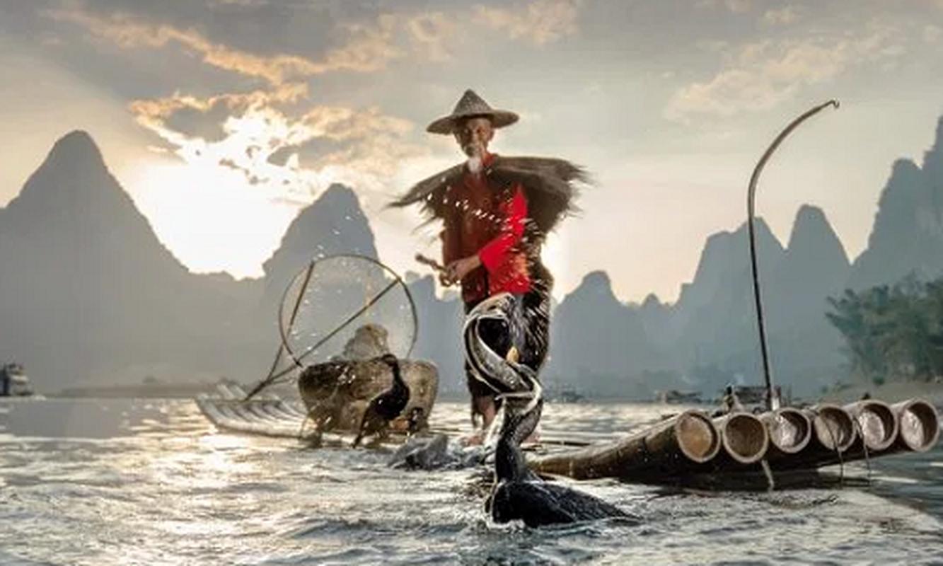 Ngoan muc canh ngu dan Trung Quoc danh ca bang chim coc dep nhu tranh ve-Hinh-2