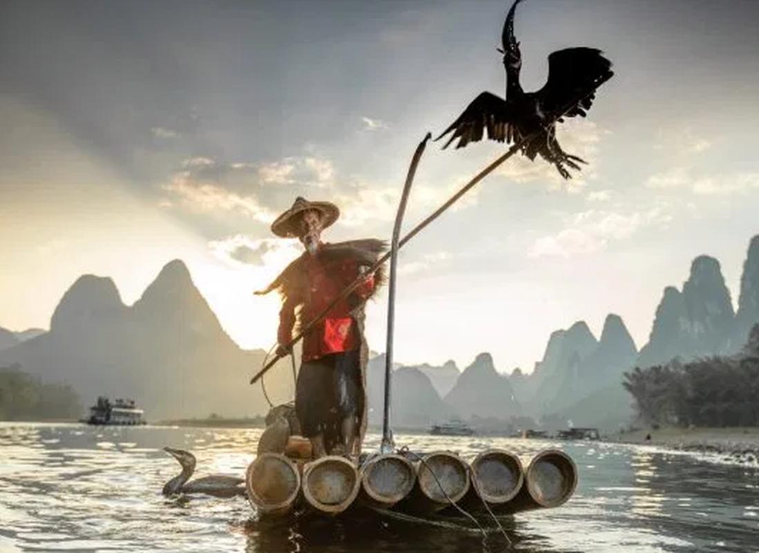 Ngoan muc canh ngu dan Trung Quoc danh ca bang chim coc dep nhu tranh ve-Hinh-3