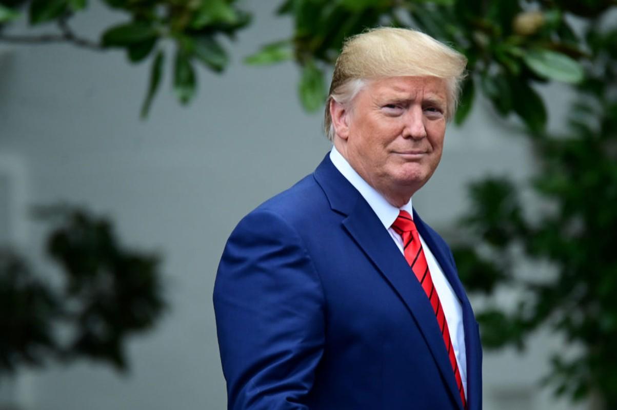 Dau an cua Tong thong My Donald Trump trong nam 2019-Hinh-8