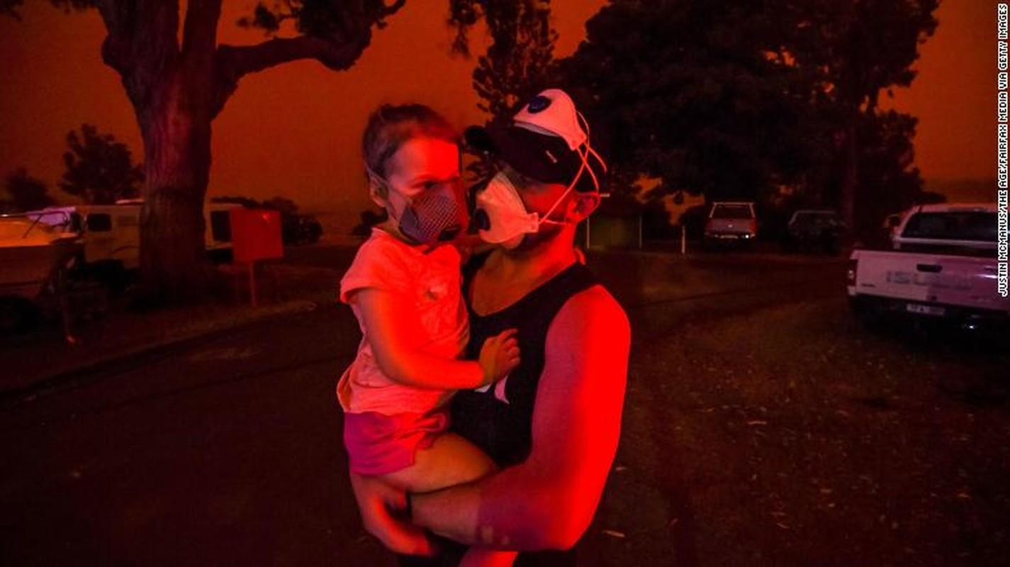 Tham hoa chay rung o Australia: Mat ca 100 nam de phuc hoi-Hinh-12