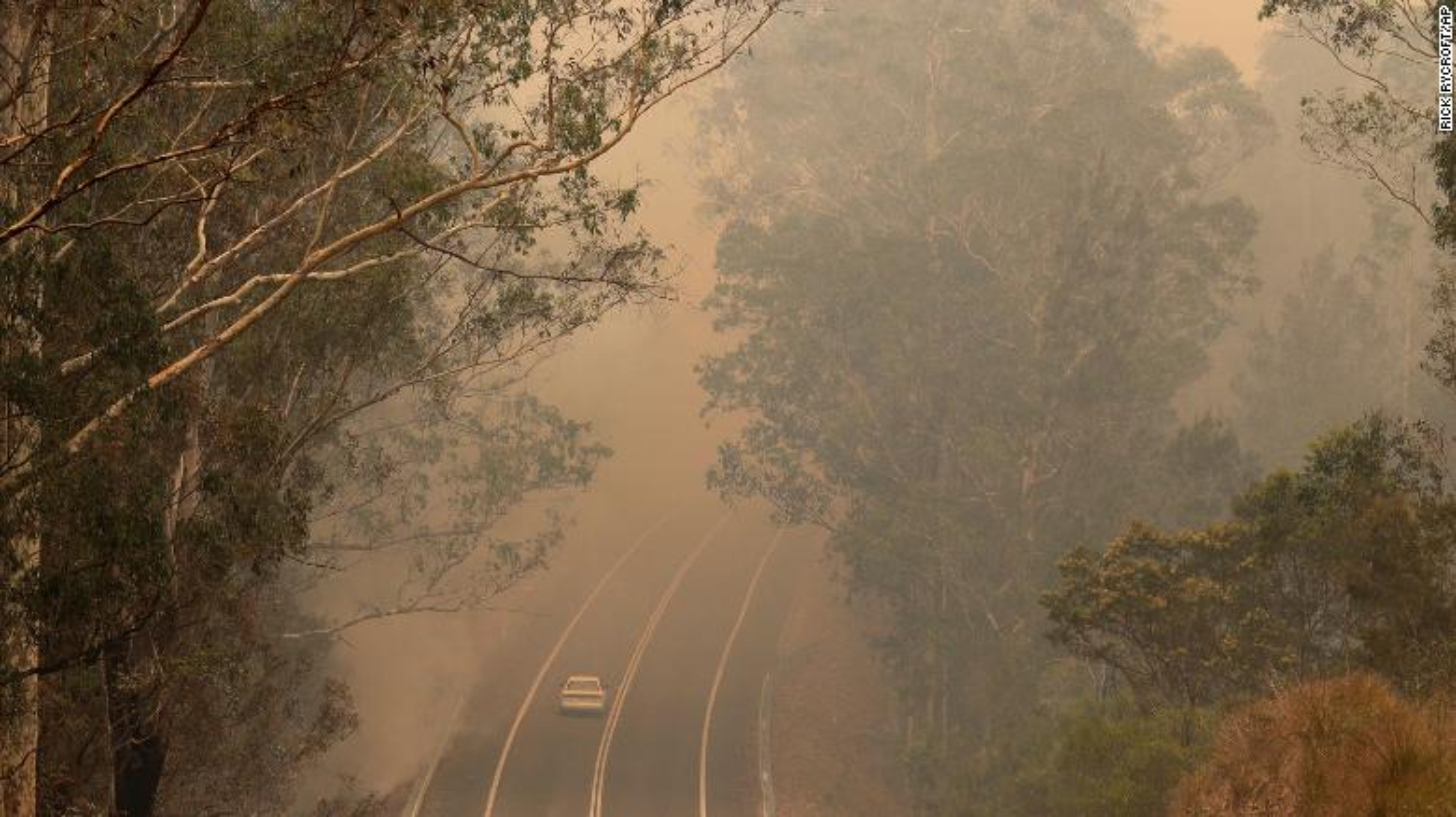 Tham hoa chay rung o Australia: Mat ca 100 nam de phuc hoi-Hinh-3