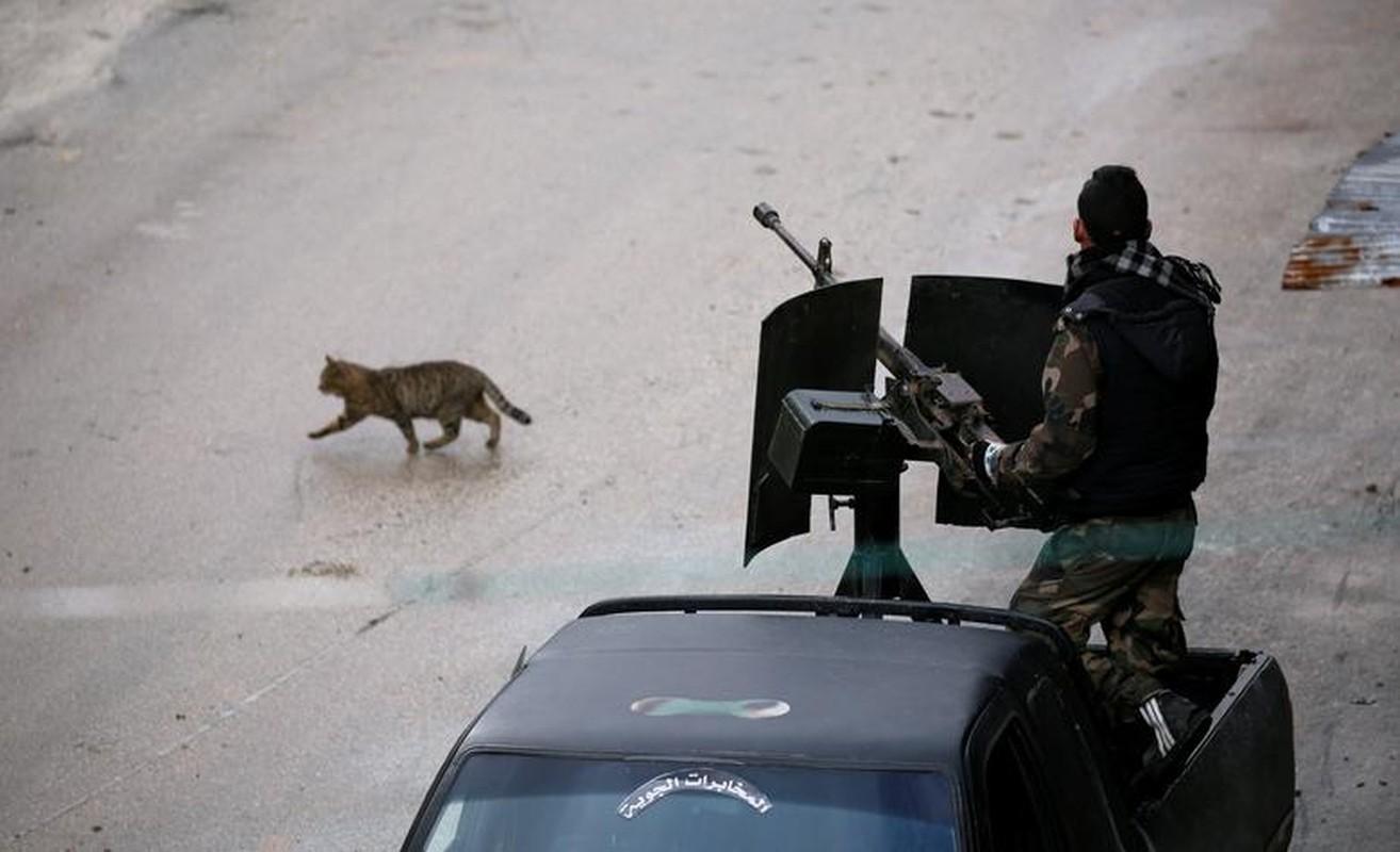 Dot nhap thanh pho chien luoc vua duoc Quan doi Syria giai phong-Hinh-6