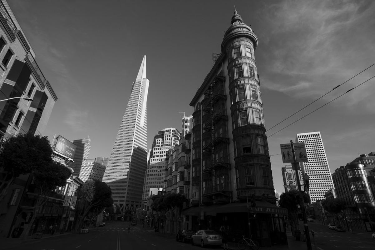 """Can canh San Francisco nhung ngay im ang giua """"bao"""" COVID-19-Hinh-2"""