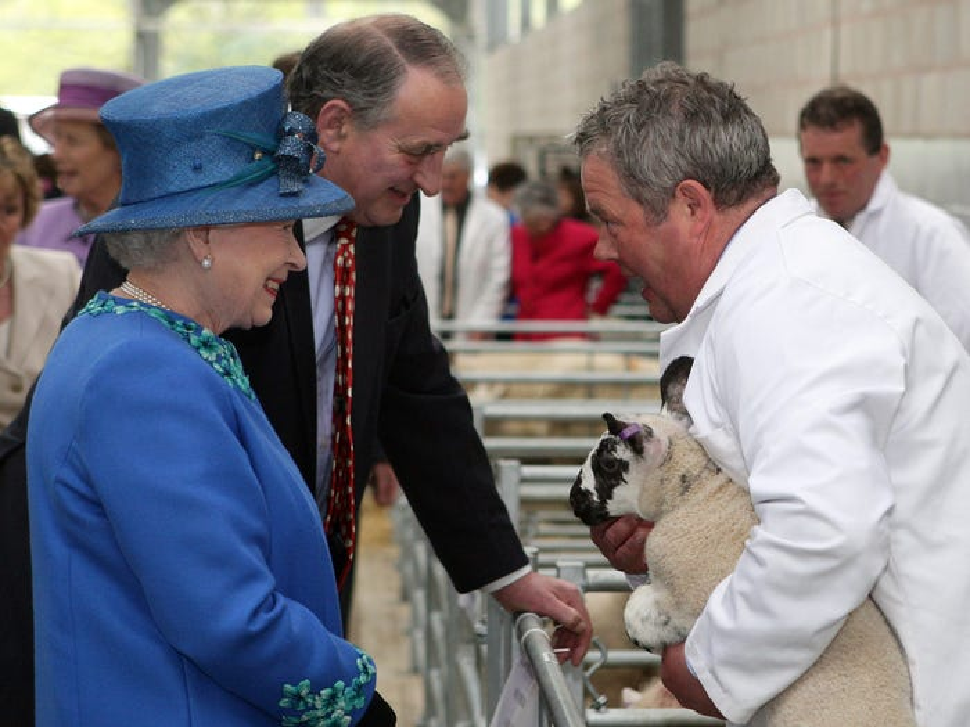 Nu hoang Anh Elizabeth II va tinh yeu doi voi dong vat-Hinh-11