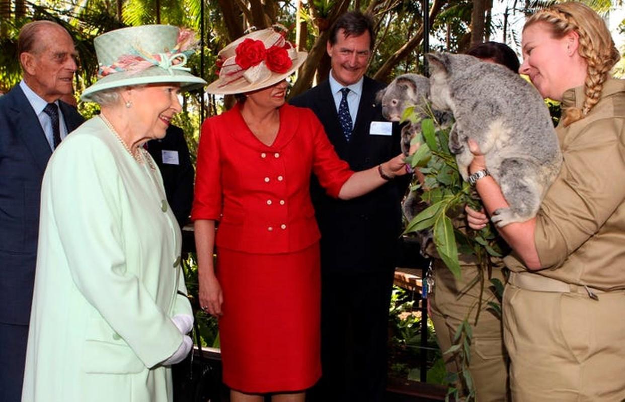 Nu hoang Anh Elizabeth II va tinh yeu doi voi dong vat-Hinh-7