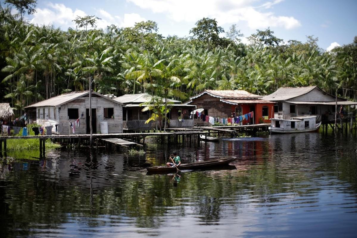 Ac mong COVID-19 o Amazon tiep tuc hoanh hanh-Hinh-10