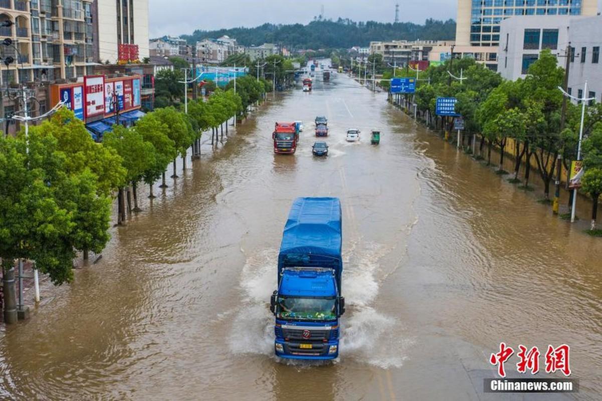 Hong thuy so 1 o Truong Giang: Soi Trung Quoc doi pho lu lut-Hinh-3