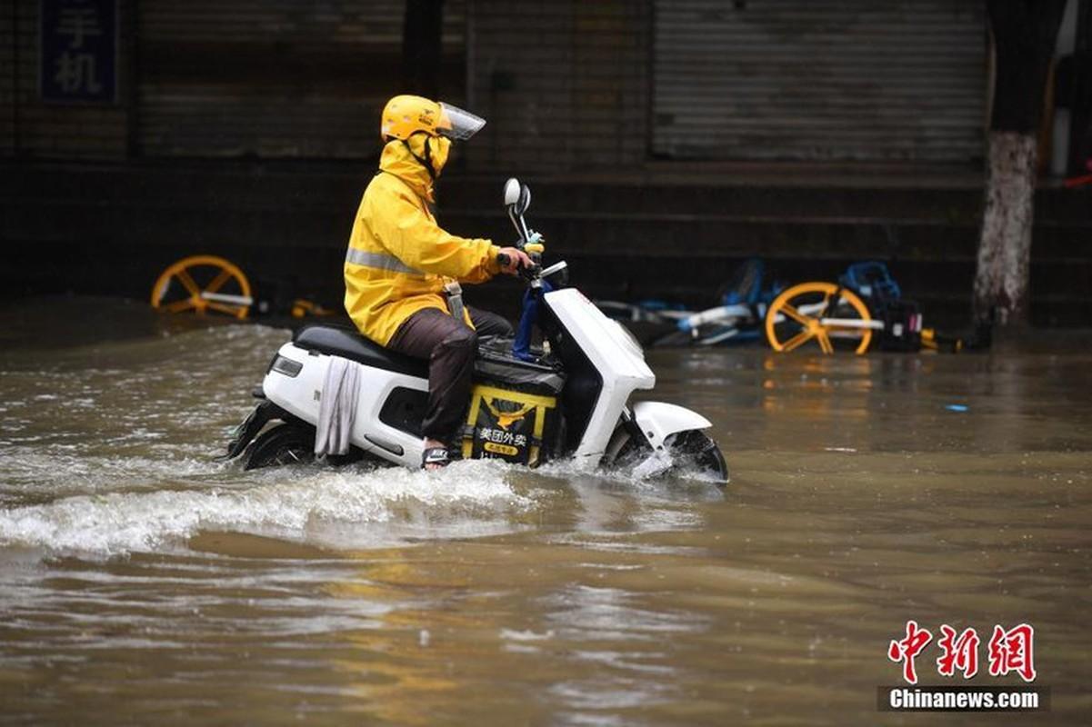 Hong thuy so 1 o Truong Giang: Soi Trung Quoc doi pho lu lut-Hinh-8