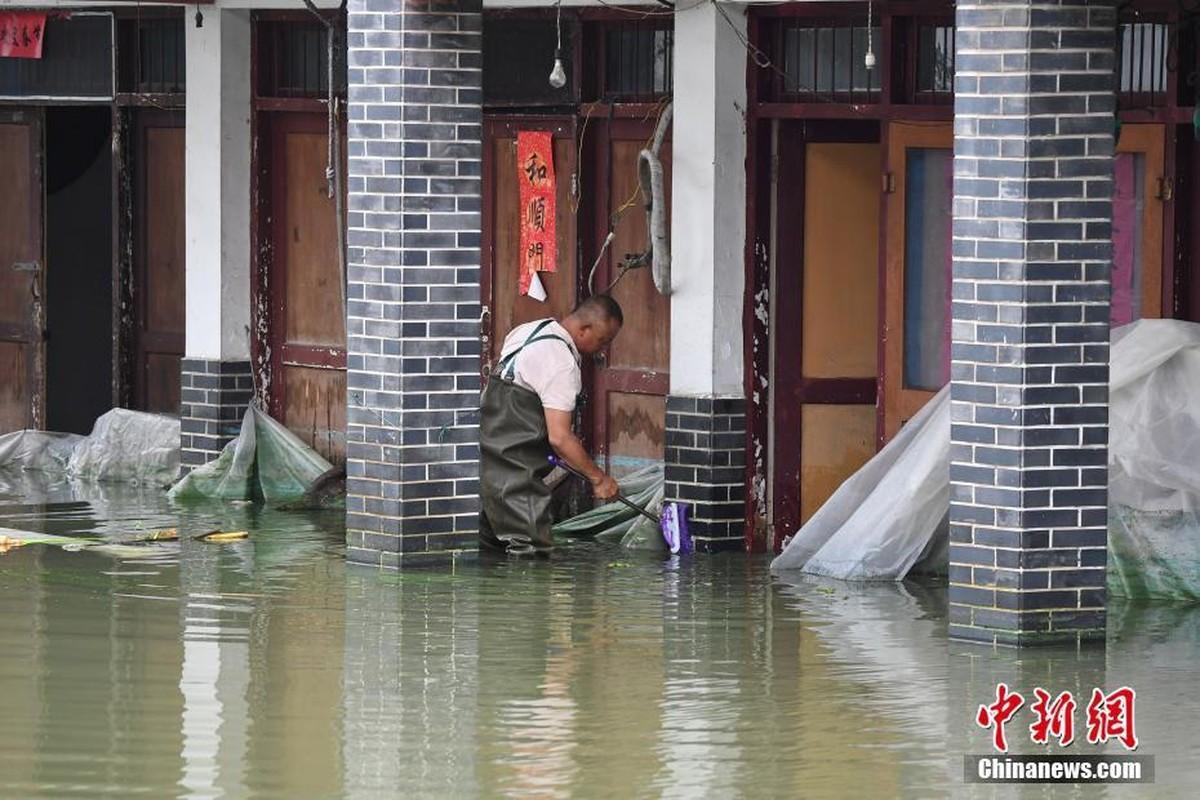 Hang chuc may moc xay de tam ngan lu o Trung Quoc-Hinh-10