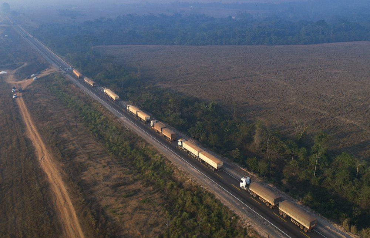 Can canh rung Amazon van chay sau mot nam-Hinh-10