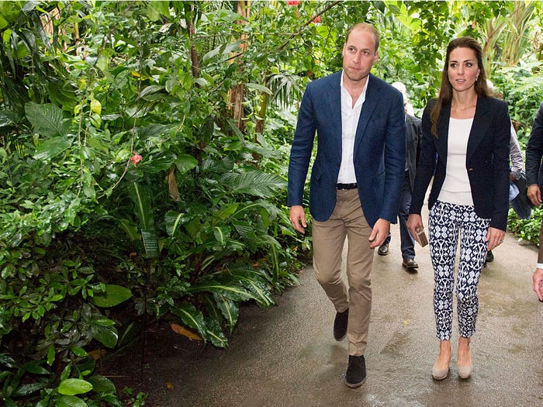 Cong nuong Kate Middleton mac gian di van dep hut hon-Hinh-9