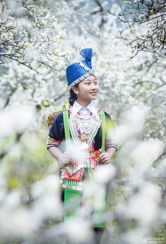 Hoa man no trang troi o mien Tay Nghe An cho don Tet-Hinh-6