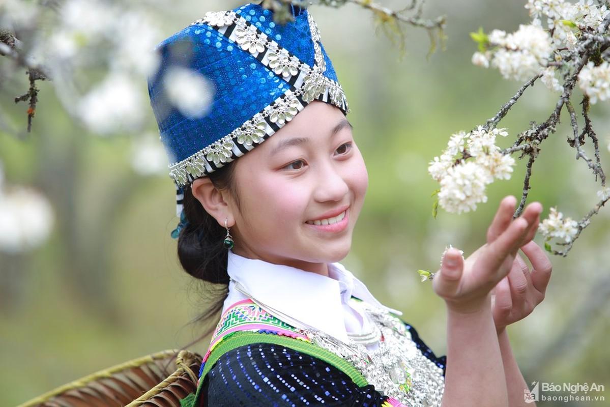 Hoa man no trang troi o mien Tay Nghe An cho don Tet-Hinh-7