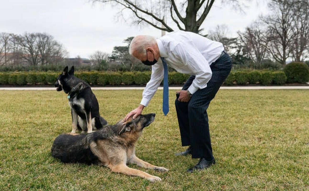 Mot ngay cua Tong thong My Joe Biden dien ra the nao?-Hinh-7
