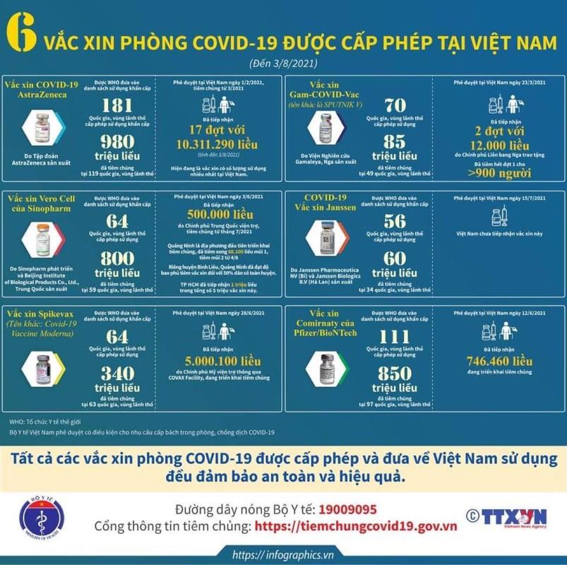 Tham kich COVID-19 tai Indonesia: Hon 100.000 nguoi tu vong-Hinh-11