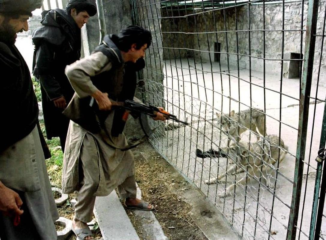 Hinh anh luc luong Taliban cai tri Afghanistan giai doan 1996-2001-Hinh-4