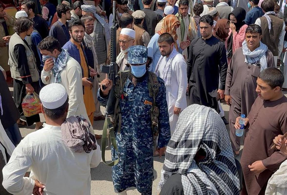 Nem da, chat tay: Loat hinh phat rung minh cua Taliban-Hinh-5