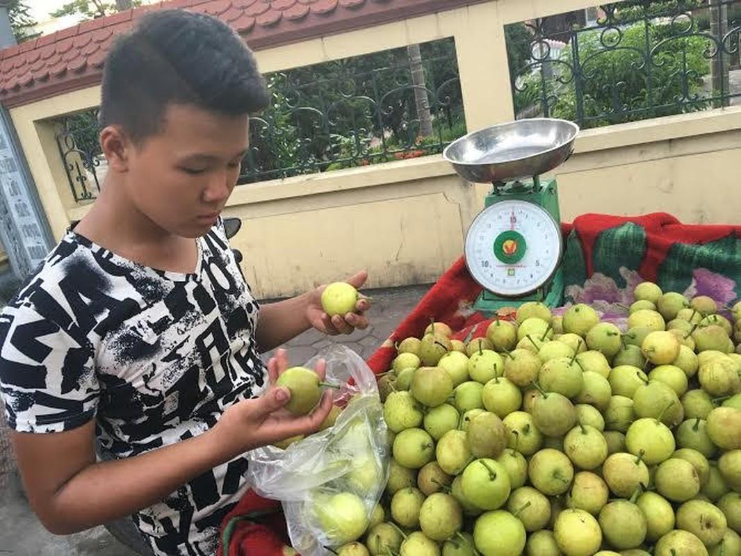 Top 6 loai trai rung sieu ngon dang duoc san lung-Hinh-6