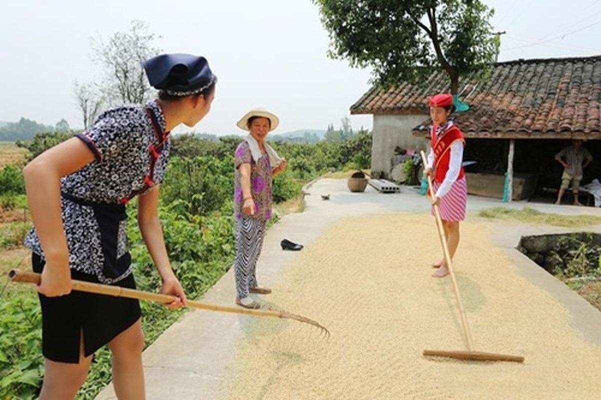 Tiep vien hang khong di giay cao got gat lua gay bao-Hinh-6