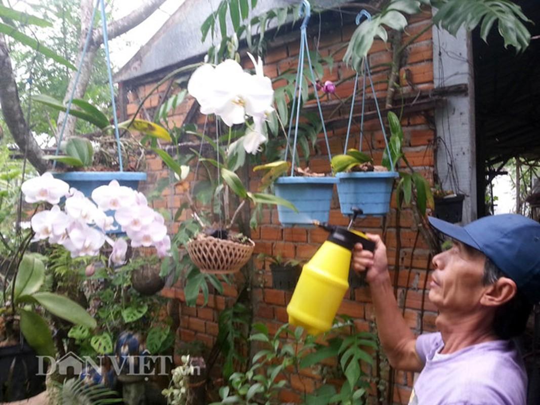 Chieu doc: Dung bia de tuoi cay, bon nam o Phu Yen-Hinh-2