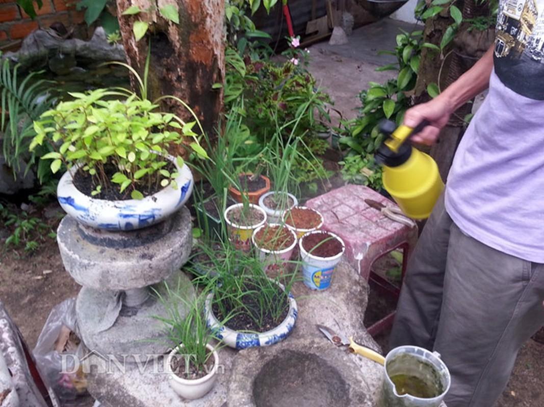 Chieu doc: Dung bia de tuoi cay, bon nam o Phu Yen-Hinh-5