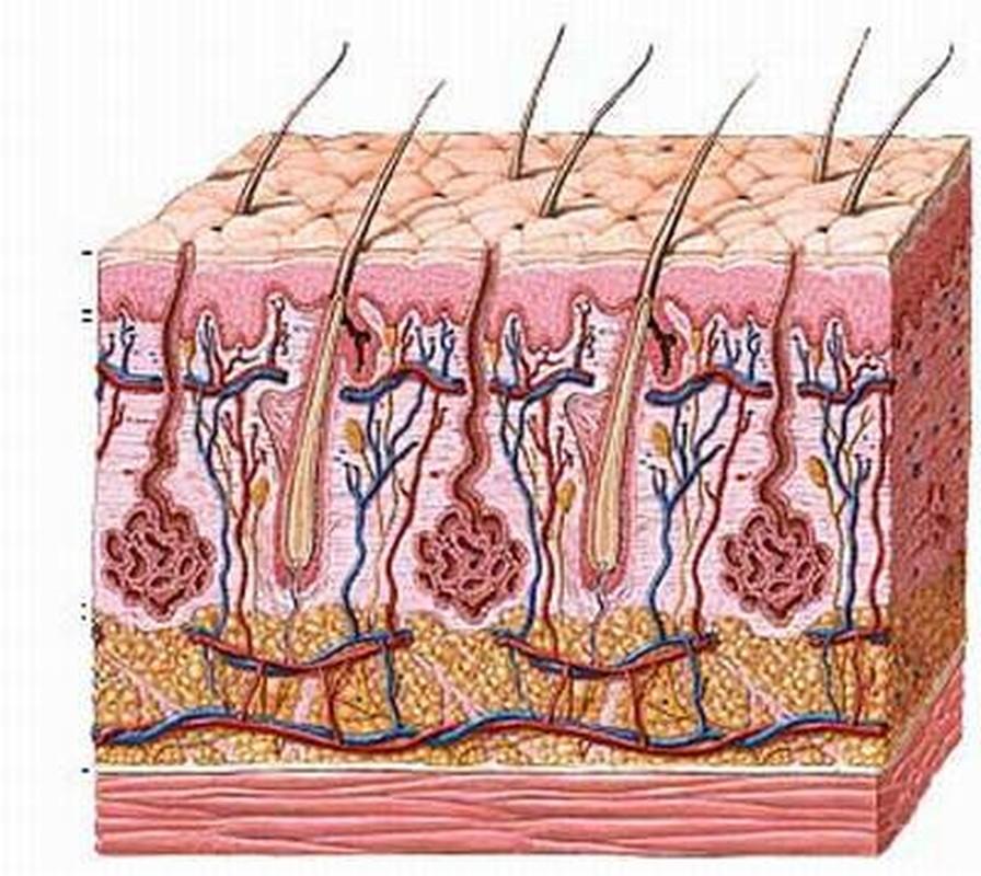 Chi tiét quy trình trị sẹo bỏng bàng laser cho em be Napalm-Hinh-6