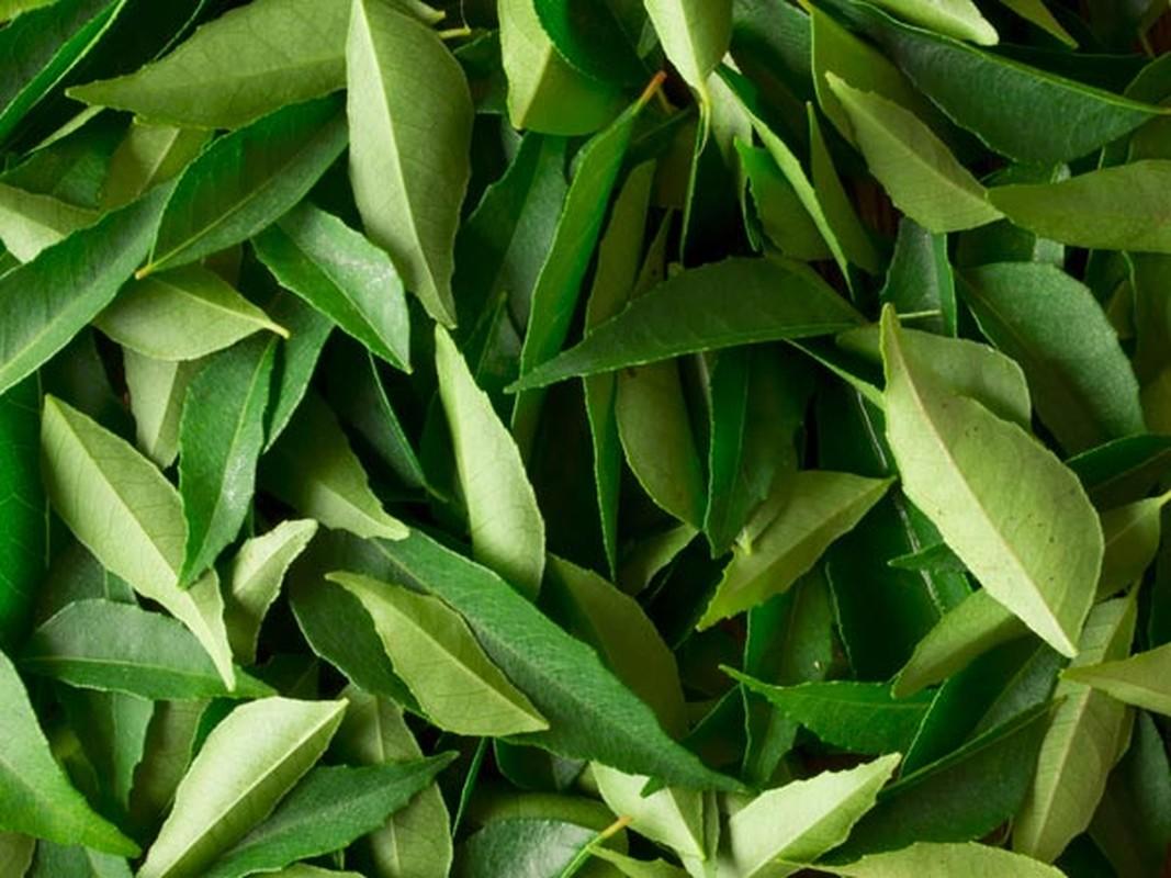 8 loại rau củ giúp tóc mọc dày trỏ lại sau dọt rung-Hinh-7