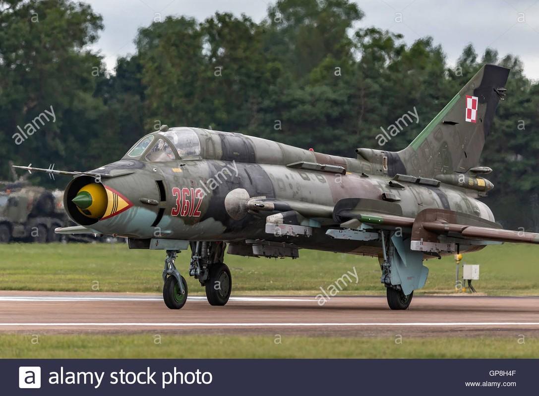 F-35 tien sat bien gioi Nga, san sang dung do S-400-Hinh-11