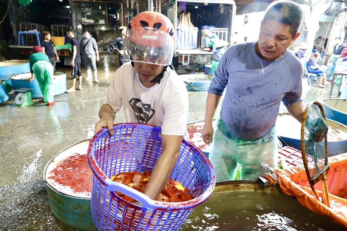 Nhon nhip cho ca lon nhat Ha Noi truoc ngay ong Cong ong Tao-Hinh-4