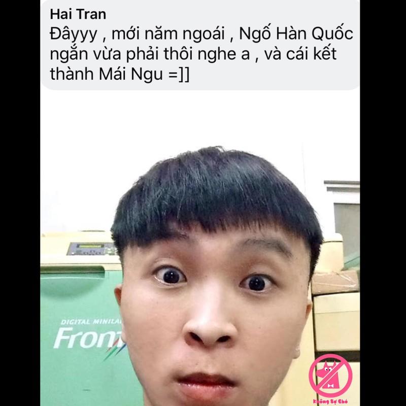 Can Tet, dan mang nhao nhao to tho lam toc khong co tam