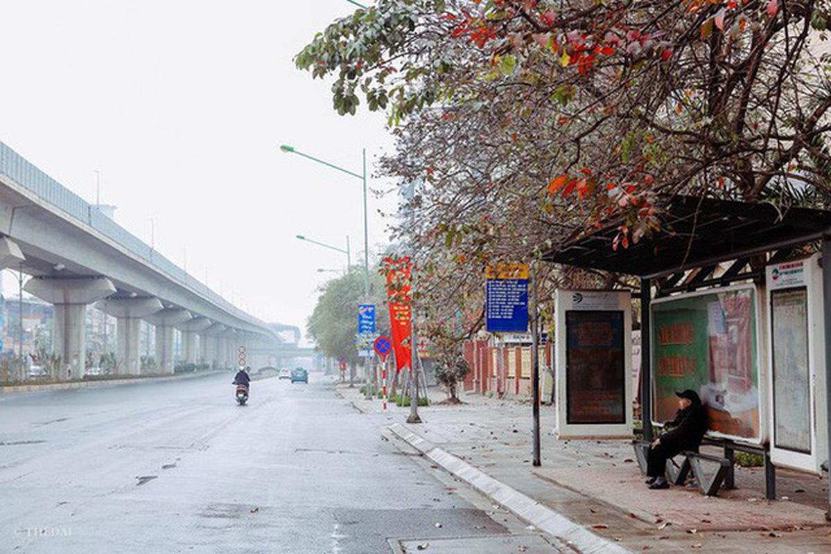 Boi hoi ngam chum anh Ha Noi tinh lang, dep la ngay Tet-Hinh-9