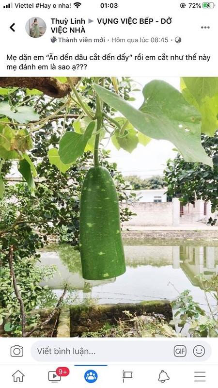 Dan mang Viet khoe tai nau nuong tham hoa nhin thoi muon bo bua-Hinh-13