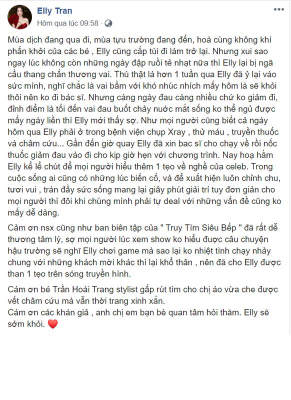 Elly Tran trai long ve nghe khien nguoi ham mo khong khoi xot xa-Hinh-4