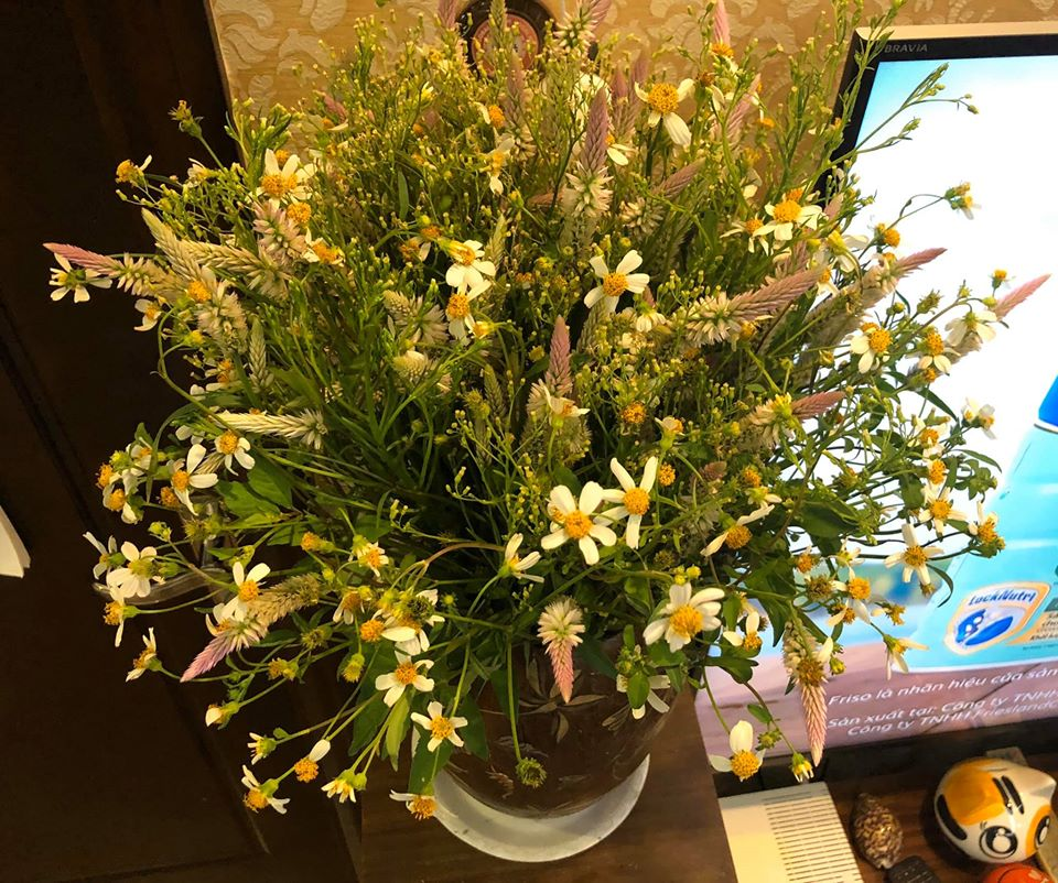 Chan cam hoa, dan mang co thu choi doc khien ai cung tram tro-Hinh-12